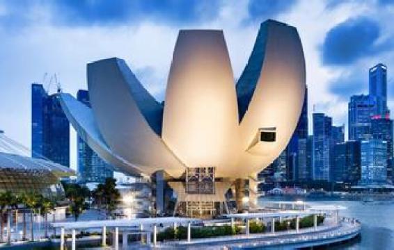 新加坡自雇移民
